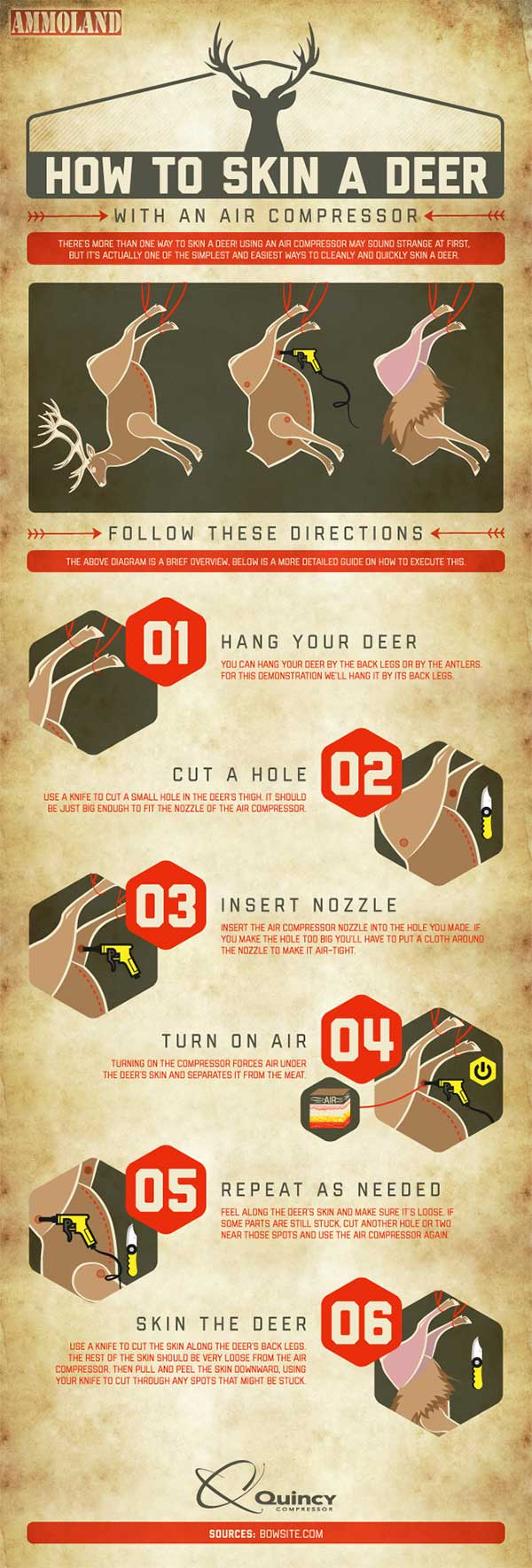 How-to-Skin-A-Deer